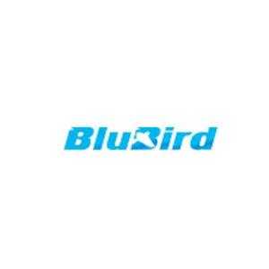 BluBird Logo