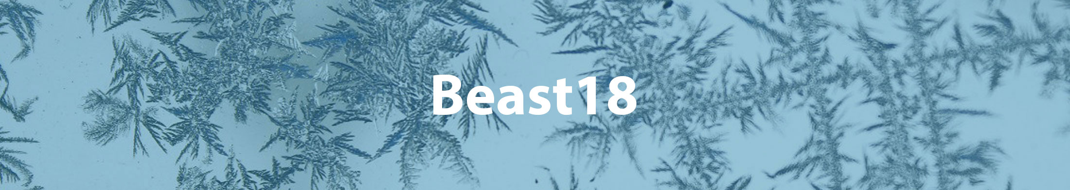 beast from the east sale at Tyre Bay Direct